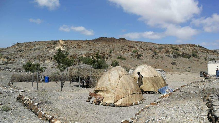 daibota-campement-de-Daoud