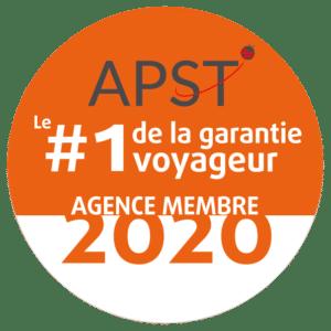 VIGNETTE-APST-2020-300x300