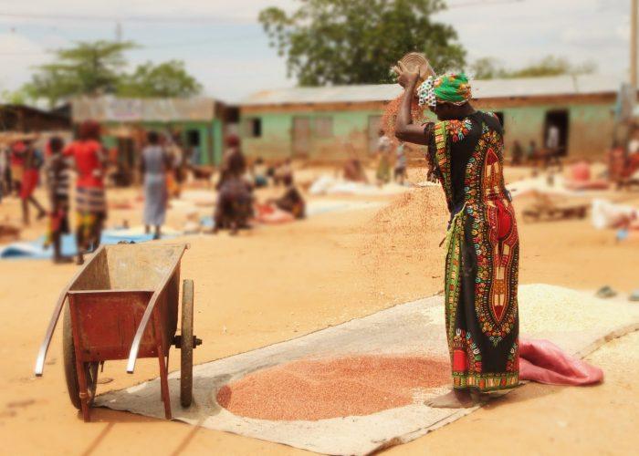 vendedores de granos etiopía -ok goba